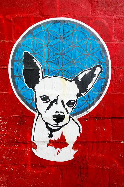 Cape Town Street Art 20
