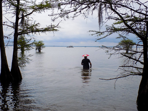 Lake Marion Plantation Islands-40
