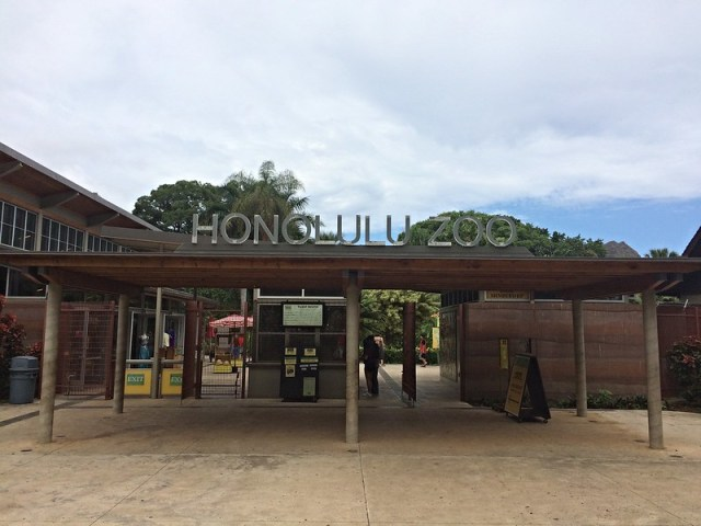 Picture from the Honolulu Zoo