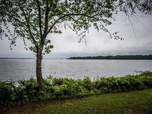 Lake Marion Plantation Islands-9