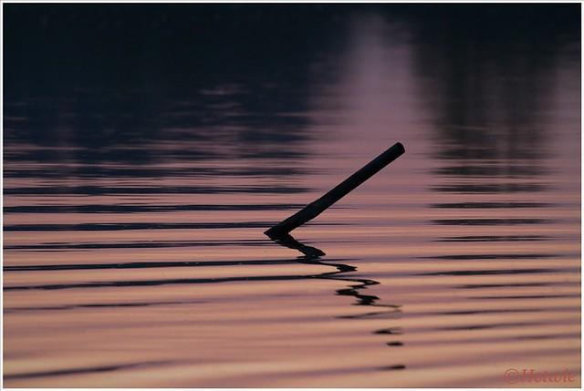 rimpels in het water (7D025986)