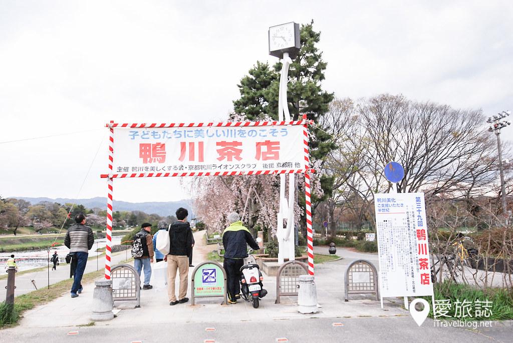 京都赏樱景点 半木之道 01