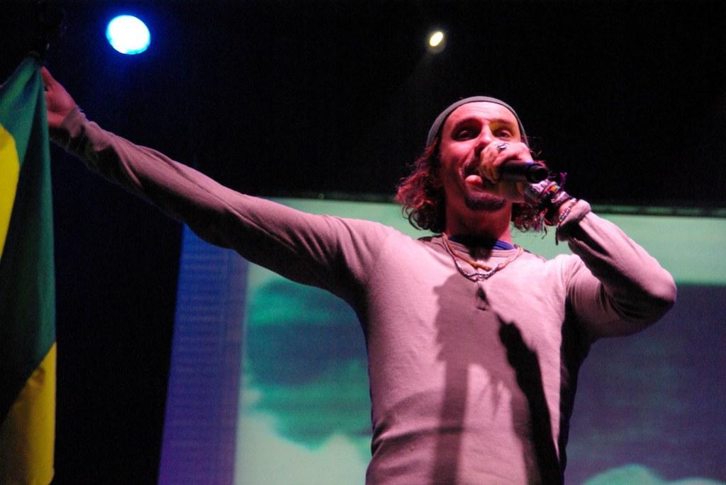 Imagen gratis de Macaco durante un concierto