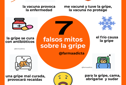 gripe y sus mitos