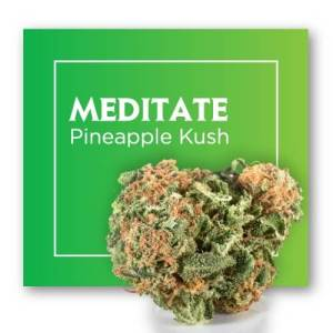 Cannactiva Flores CBD Meditate Bliss 2 grs