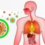 Qué tengo ¿Tengo gripe o resfriado? Preguntas y soluciones