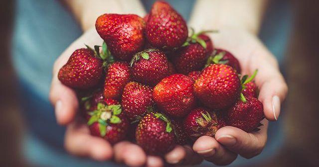 ¿Cuáles son los beneficios de la fibra en la comida? | Consejos Nutrición
