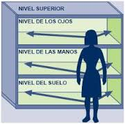 niveles lineales