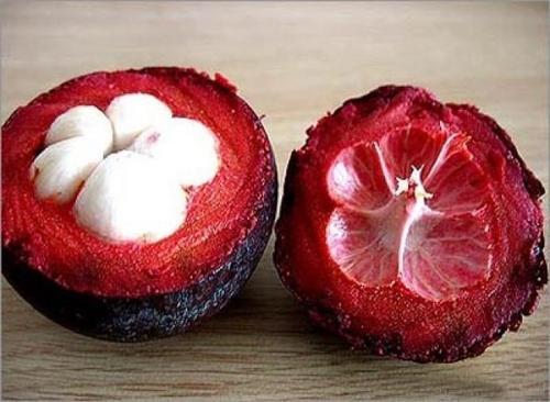 плоды Мангустина