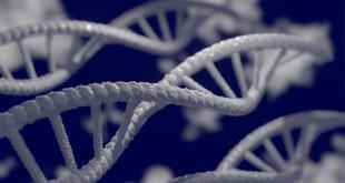 Farmakogenomik, Terapi Gaya Baru Di Masa Mendatang