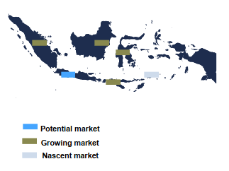 Pharmaceutical Market Indonesia