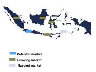 Pharmaceutical Market Indonesia
