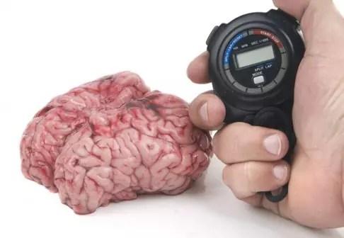 cevni mozkova