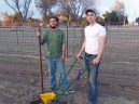 Soil Preparation WWOOFers