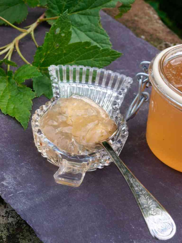 Grow your own and make White Currant Jelly Jam