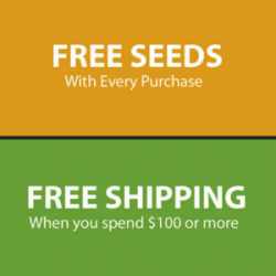 marijuana seeds for sale free seeds