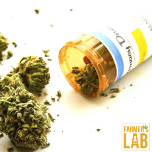 Cannabis Seeds Shipped Directly to Your Door in Brookings, SD. Farmers Lab Seeds is your #1 supplier to growing Cannabis in Brookings, South Dakota.