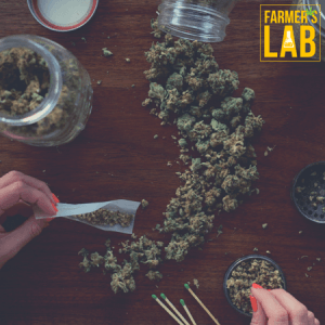 Cannabis Seeds Shipped Directly to Your Door in Buckeye, AZ. Farmers Lab Seeds is your #1 supplier to growing Cannabis in Buckeye, Arizona.