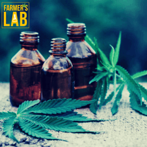 Cannabis Seeds Shipped Directly to Your Door in Charleston, SC. Farmers Lab Seeds is your #1 supplier to growing Cannabis in Charleston, South Carolina.