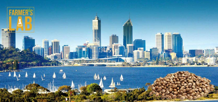 Buy Cannabis (Marijuana) Seeds Shipped Directly to Collie, Western Australia. Growing weed in Collie, WA is now easy with the help of Farmers Lab Seeds.