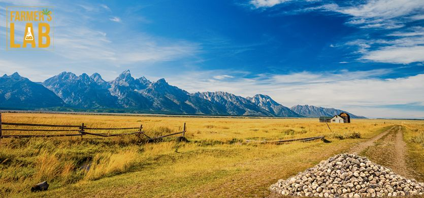 Buy Cannabis (Marijuana) Seeds Shipped Directly to Jackson, Wyoming. Growing weed in Jackson, WY is now easy with the help of Farmers Lab Seeds.