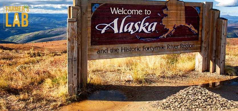 Buy Cannabis (Marijuana) Seeds Shipped Directly to Knik-Fairview, Alaska. Growing weed in Knik-Fairview, AK is now easy with the help of Farmers Lab Seeds.