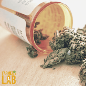 Cannabis Seeds Shipped Directly to Your Door in Loveland, OH. Farmers Lab Seeds is your #1 supplier to growing Cannabis in Loveland, Ohio.