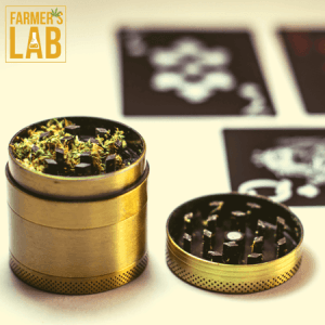 Cannabis Seeds Shipped Directly to Your Door in Ocean Springs, MS. Farmers Lab Seeds is your #1 supplier to growing Cannabis in Ocean Springs, Mississippi.