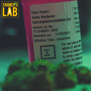Cannabis Seeds Shipped Directly to Your Door in Wetaskiwin, AB. Farmers Lab Seeds is your #1 supplier to growing Cannabis in Wetaskiwin, Alberta.
