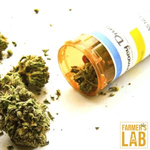 Marijuana Seeds Shipped Directly to Ashland, OH. Farmers Lab Seeds is your #1 supplier to growing Marijuana in Ashland, Ohio.