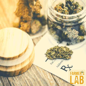Marijuana Seeds Shipped Directly to Damascus, OR. Farmers Lab Seeds is your #1 supplier to growing Marijuana in Damascus, Oregon.