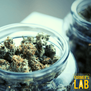 Marijuana Seeds Shipped Directly to Fort St. John, BC. Farmers Lab Seeds is your #1 supplier to growing Marijuana in Fort St. John, British Columbia.