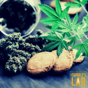 Marijuana Seeds Shipped Directly to Guelph, ON. Farmers Lab Seeds is your #1 supplier to growing Marijuana in Guelph, Ontario.