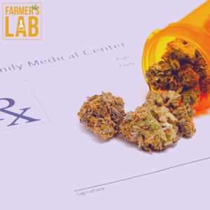 Marijuana Seeds Shipped Directly to Laurel, FL. Farmers Lab Seeds is your #1 supplier to growing Marijuana in Laurel, Florida.