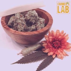 Marijuana Seeds Shipped Directly to Newton, KS. Farmers Lab Seeds is your #1 supplier to growing Marijuana in Newton, Kansas.