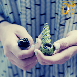Marijuana Seeds Shipped Directly to Sabine, TX. Farmers Lab Seeds is your #1 supplier to growing Marijuana in Sabine, Texas.