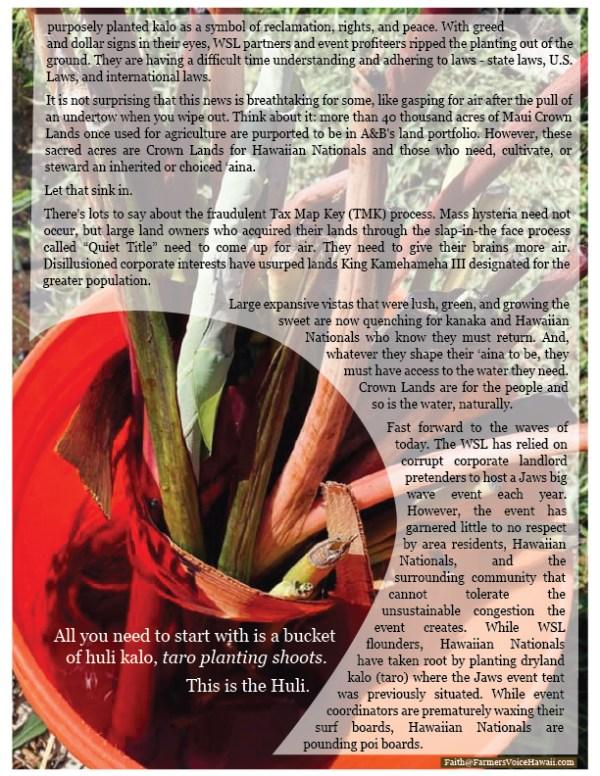 bucket of huli kalo