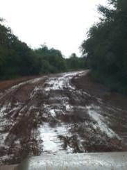 Our Road to Vilanculos