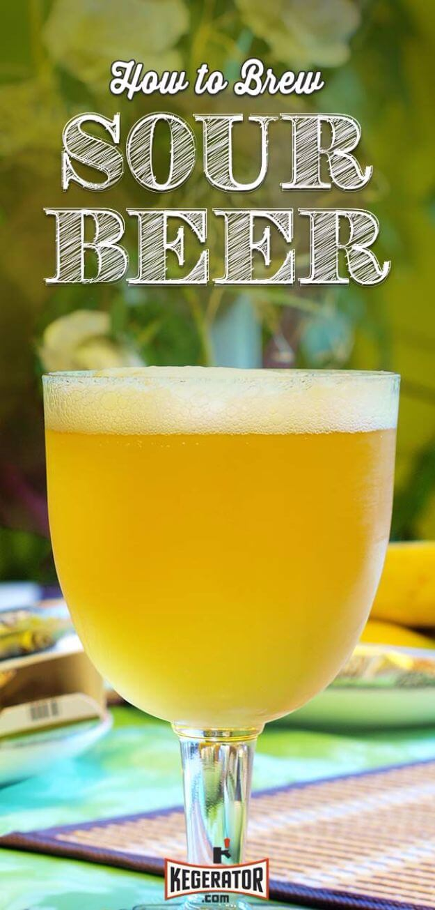 Homemade Sour Beer