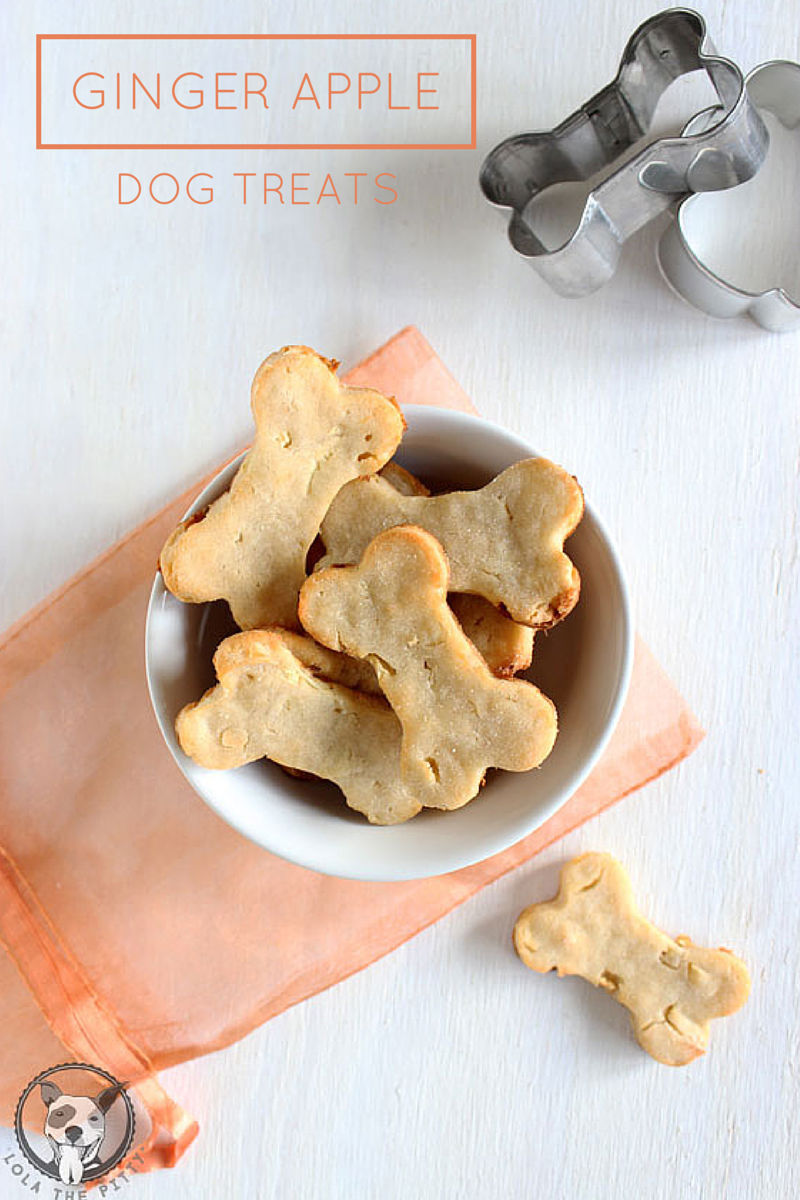 Ginger Apple Dog Treats