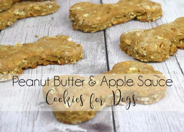 Peanut Butter And Apple Sauce Cookies For Dogs