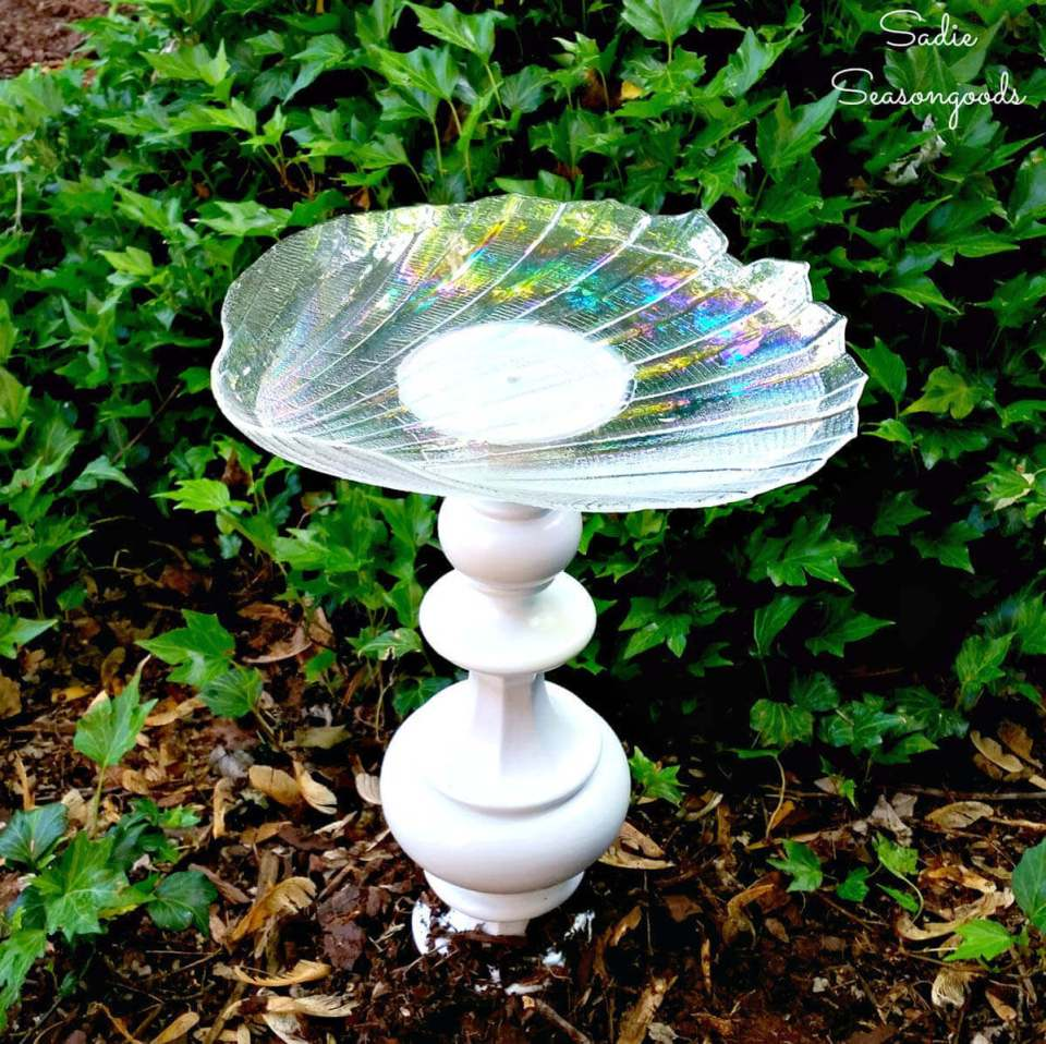 Seashell Dish on a Pedestal