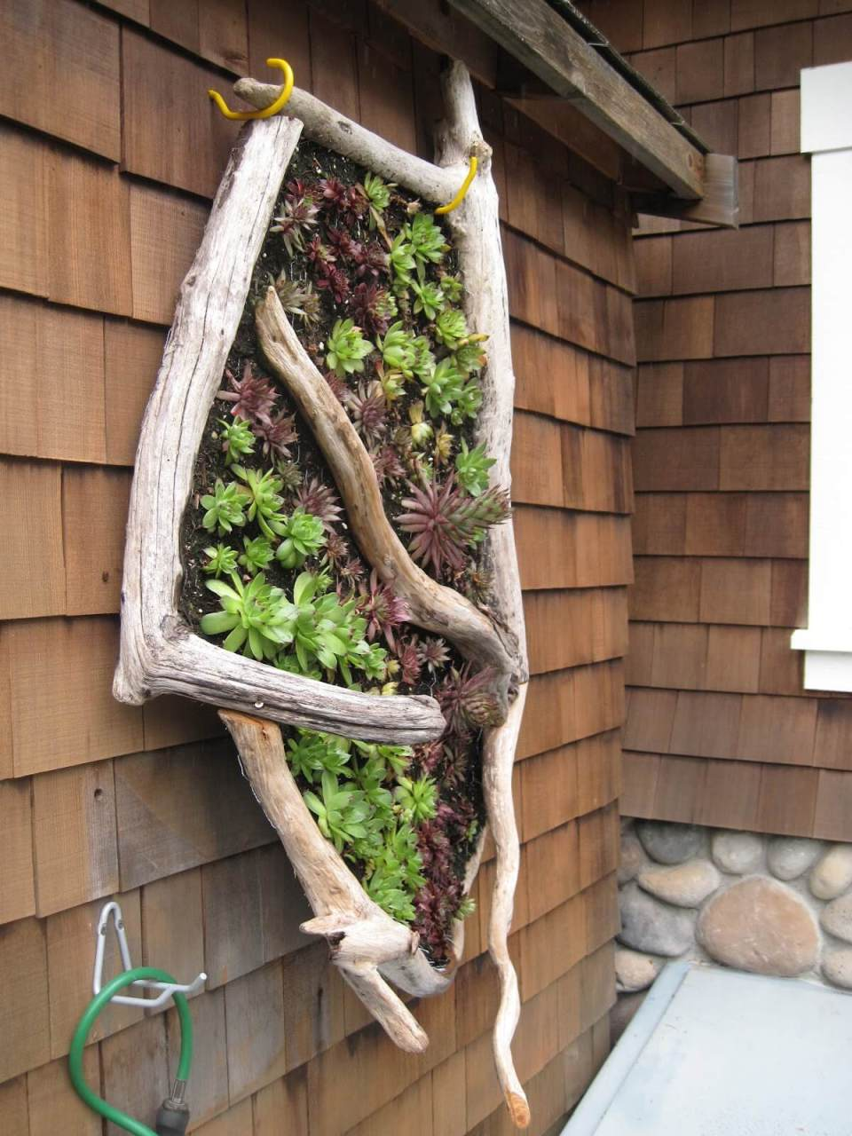 A Vertical Garden Idea for a Seaside Cottage