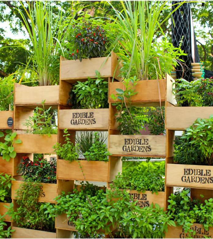 Stack Crates for a Tiered Edible Garden