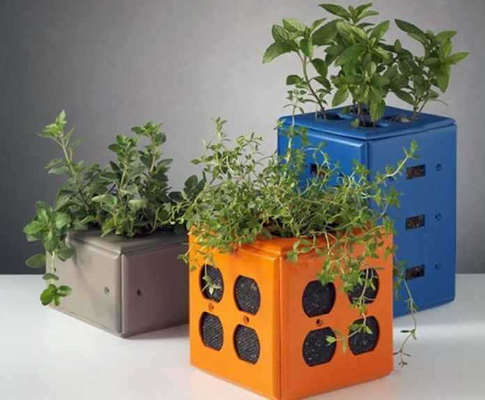 Switch Plate Planters
