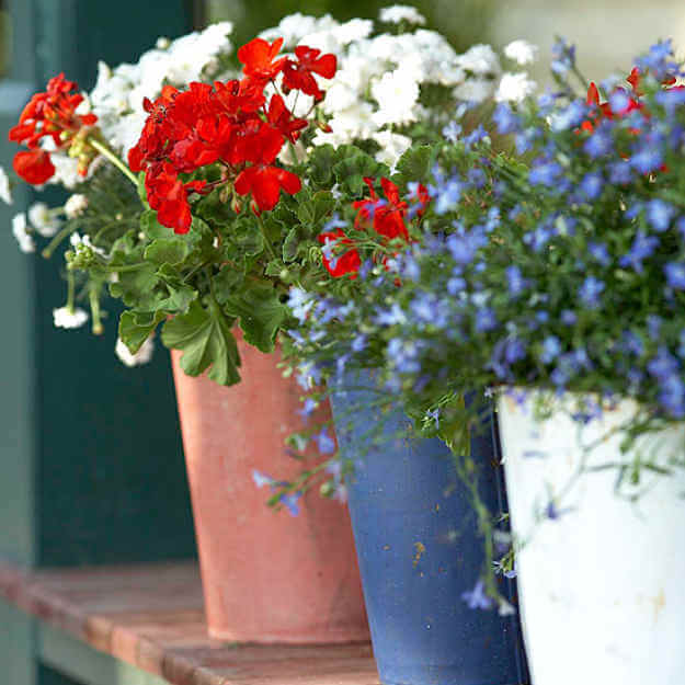 Red, White, And Blue Planters