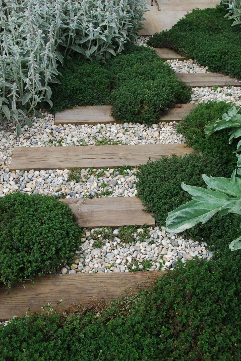 Rustic Wood And Stone Accented With Thyme