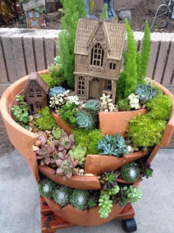 Succulent Garden Ideas: Broken Dreams
