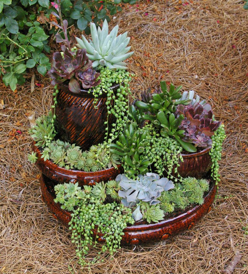 DIY Flower Towers Ideas: Picture Perfect Mini Succulent Tower
