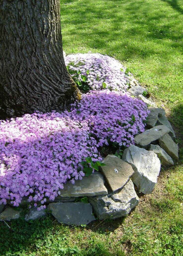Sweet and Rustic Stone Edged Flowerbed
